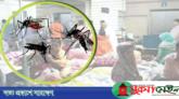 ২৪ ঘণ্টায় আরও ২৮৭ ডেঙ্গু রোগী হাসপাতালে