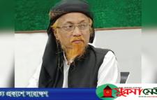 ঢাকা মহানগর হেফাজতের আমির জুনায়েদ গ্রেপ্তার