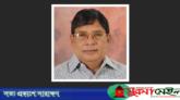 বিএনপি নেতা দিলদার হোসেন সেলিম আর নেই