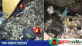 নালায় পড়ে কলেজ ছাত্রী নিখোঁজ